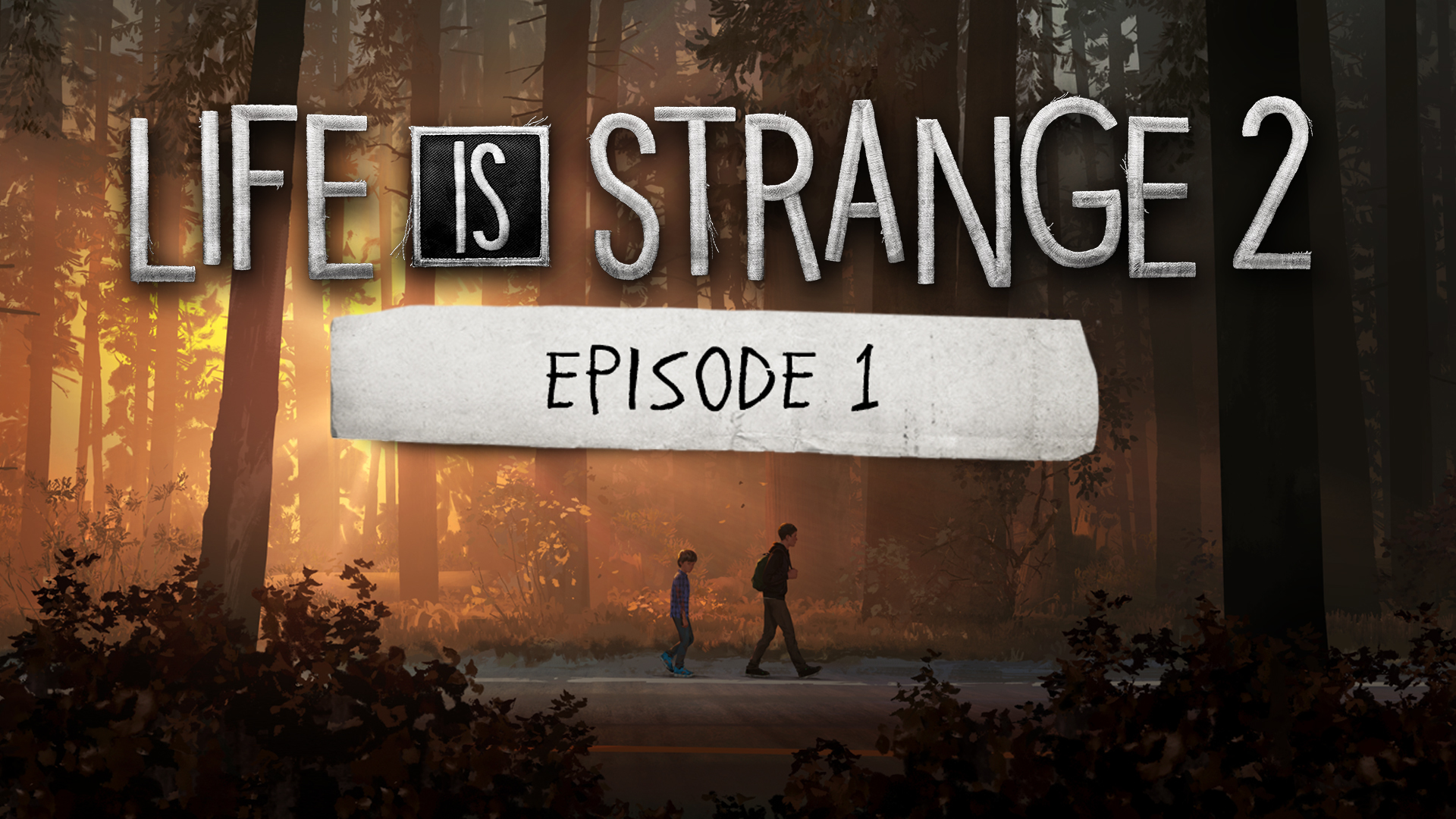 Life Is Strange 2 Episode 1 Pc Steam Game Fanatical